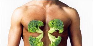 Green, Skin, Shoulder, Leaf, Joint, Trunk, Muscle, Chest, Abdomen, Organ,