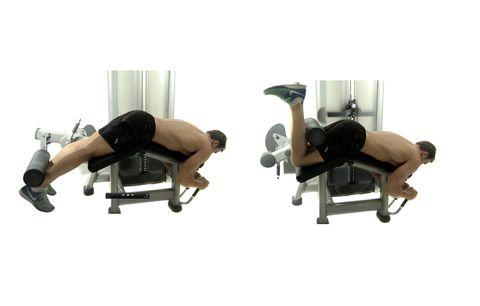 Arm, Bench, Leg, Furniture, Room, Leg extension, Exercise equipment, Wheel,