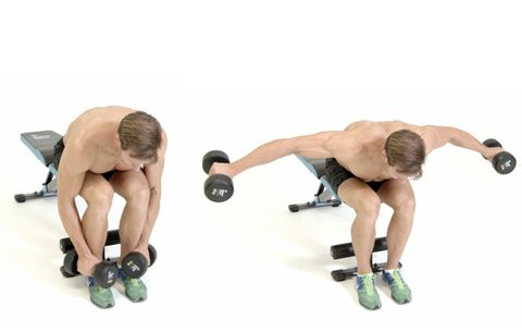 Weights, Exercise equipment, Arm, Dumbbell, Joint, Kettlebell, Muscle, Press up, Sports equipment, Physical fitness,