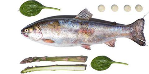 Vertebrate, Fish, Grey, Kitchen utensil, Fish, Cutlery, Tail, Fin, Ray-finned fish, Marine biology,