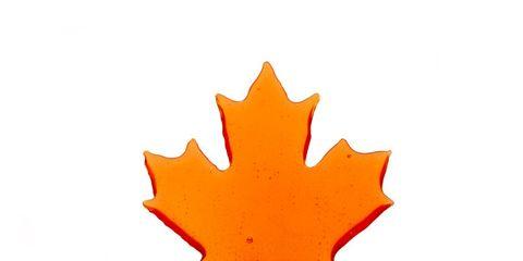 Leaf, Orange, Soapberry family, Coquelicot, Maple leaf, Graphics, Maple,