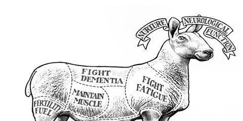 Organism, Line, Terrestrial animal, Jaw, Snout, Art, Artwork, Tail, Illustration, Goats,