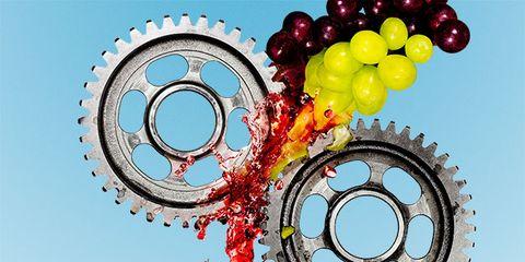 Pattern, Circle, Gear, Visual arts, Bicycle drivetrain part, Vitis, Crankset, Seedless fruit, Grapevine family,