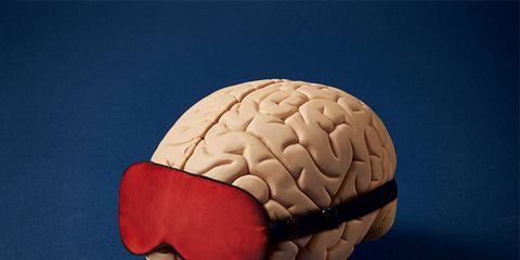 Brain, Brain, Head, Organ, Human anatomy, Human body, Food,
