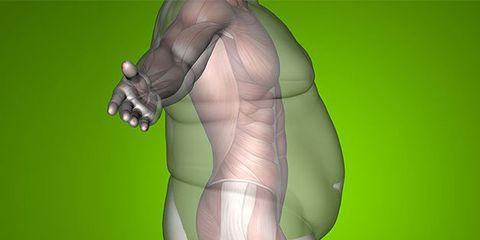 Shoulder, Joint, Muscle, 3d modeling, Arm, Leg, Human, Fictional character, Human body, Organism,