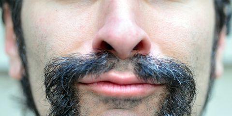 Facial hair, Hair, Beard, Face, Moustache, Chin, Nose, Hairstyle, Eyebrow, Lip,