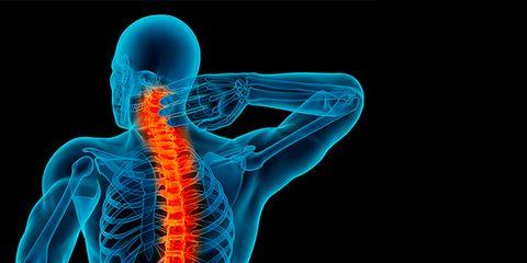 X-ray, Shoulder, Joint, Human anatomy, Organ, Organism, Neck, Medical, Human, Back,