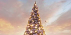 Nature, Winter, Natural environment, Atmosphere, Snow, Woody plant, Freezing, Christmas tree, World, Biome,