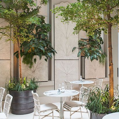 Furniture, Table, Fixture, Flowerpot, Outdoor furniture, Outdoor table, Shade, Houseplant, Courtyard, Patio,