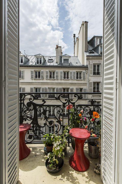 Flowerpot, Petal, House, Houseplant, Coquelicot, Vase, Flower Arranging, Courtyard, Floral design, Annual plant,