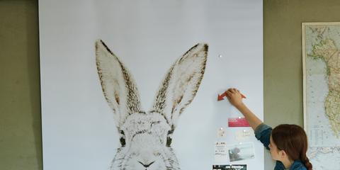 Denim, Jeans, Table, Interior design, Adaptation, Rabbits and Hares, Hare, Rabbit, Stool, Design,