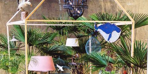 Blue, Plant, Outdoor furniture, Majorelle blue, Coffee table, Flowerpot, Lamp, Houseplant, Garden, Lampshade,