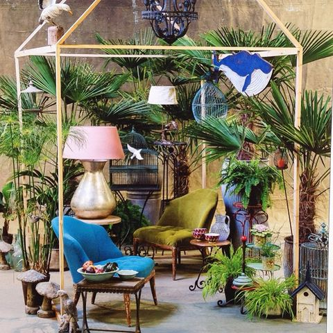 Blue, Plant, Outdoor furniture, Majorelle blue, Coffee table, Flowerpot, Lamp, Houseplant, Garden, Lampshade,
