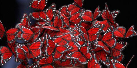 Lip, Red, Pattern, Headgear, Art, Fashion, Illustration, Fashion design, Graphic design, Visual arts,