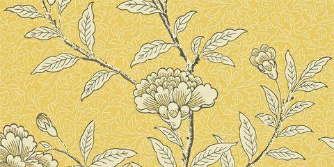 Yellow, Branch, Leaf, Botany, Pattern, Art, Twig, Flowering plant, Beige, Plant stem,