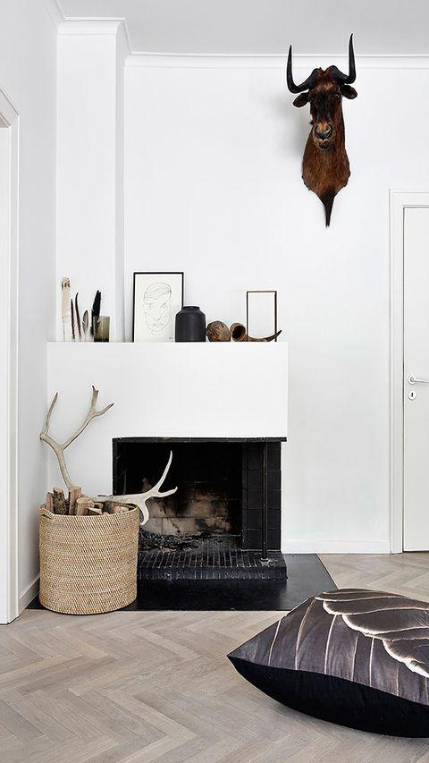 Room, Interior design, Wall, Floor, Flooring, Bovine, Natural material, Interior design, Hearth, Door,