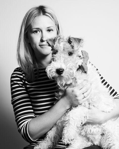 Dog breed, Dog, Carnivore, Mammal, Terrier, Snout, Monochrome photography, Monochrome, Schnauzer, Black-and-white,