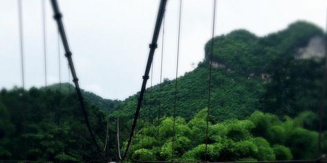 Nature, People in nature, Summer, Rope, Beauty, Travel, Bridge, Rope bridge, Foot, Inca rope bridge,