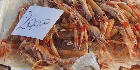 Organism, Arthropod, Invertebrate, Peach, Decapoda, Natural material, Seafood, Crustacean, Shellfish, Bivalve,