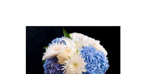 Petal, Flower, Cut flowers, Bouquet, Flowering plant, Floristry, Flower Arranging, Vase, Cobalt blue, Floral design,