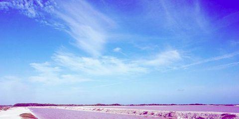 Body of water, Coastal and oceanic landforms, Shore, Fluid, Coast, Landscape, Horizon, Sand, Summer, Magenta,