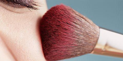 Lip, Cheek, Brown, Skin, Eyebrow, Eyelash, Brush, Jaw, Organ, Beauty,