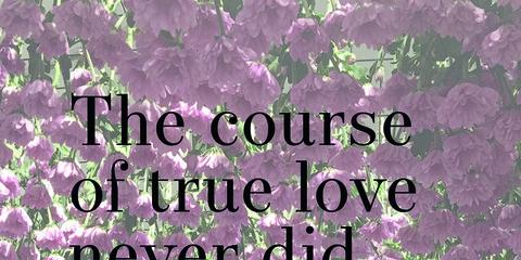 Text, Font, Purple, Lavender, Friendship, Plant, Happy, Photo caption, Wildflower, Illustration,