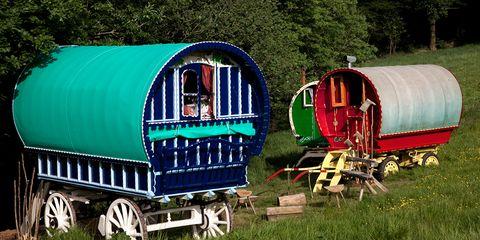 Transport, Rural area, Rolling stock, Paint, Grassland, Wagon, Rolling, Railroad car, Train, Classic,