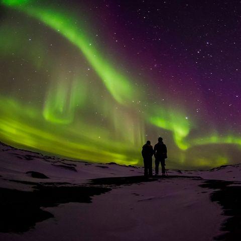 Aurora, Green, Purple, Atmospheric phenomenon, Night, Space, Violet, Star, Astronomical object, Astronomy,