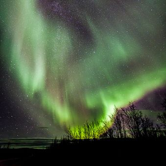 Aurora, Sky, Nature, Green, Atmospheric phenomenon, Atmosphere, Light, Landscape, Night, Geological phenomenon,