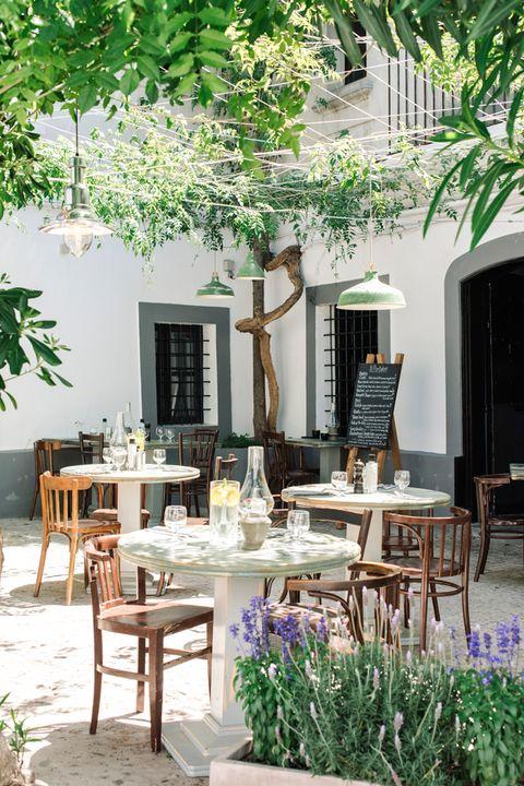 Furniture, Table, Chair, Twig, Outdoor table, Home, Door, Outdoor furniture, Flowerpot, Shade,