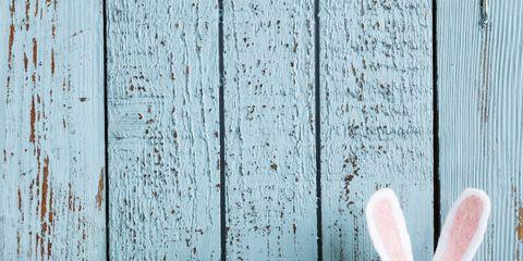Easter egg, Egg, Egg, Easter, Easter bunny, Rabbit, Rabbits and Hares, Food,