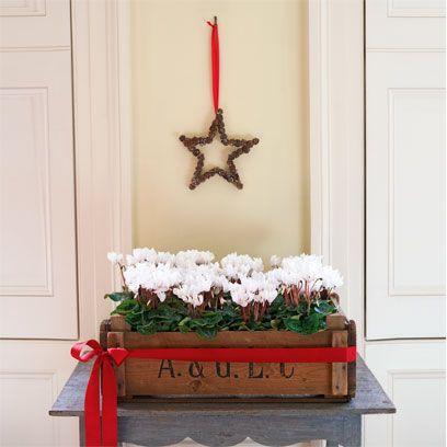 Red, Door, Flower, Home door, Fixture, Carmine, Flower Arranging, Floristry, Floral design, Cut flowers,