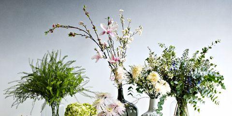 Branch, Flower, Linens, Interior design, Bouquet, Artifact, Cut flowers, Twig, Vase, Petal,