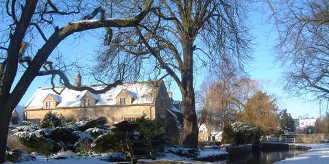 Winter, Branch, Tree, Waterway, Freezing, Woody plant, Channel, Snow, Bank, Residential area,