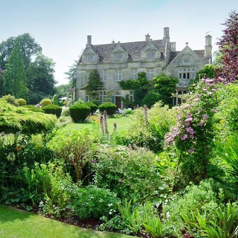 Plant, Shrub, Property, Garden, House, Building, Manor house, Castle, Hedge, Mansion,