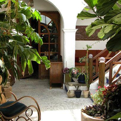 Flowerpot, Plant, Interior design, Houseplant, Arch, Annual plant, Herb, Hacienda,