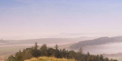 Natural landscape, Atmospheric phenomenon, Grassland, Hill, Grass, Wall, Fell, Morning, Grass family, Mist,