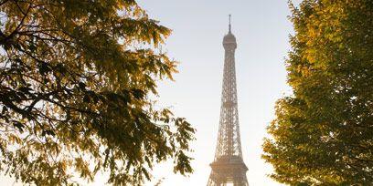 Nature, Tower, Branch, Tree, Wonders of the world, Sunlight, Landmark, Urban area, Woody plant, Light,
