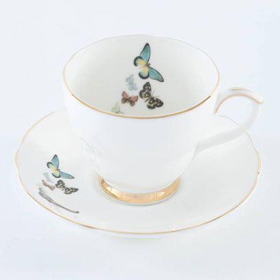 Serveware, Dishware, Drinkware, Porcelain, Cup, Coffee cup, Ceramic, Teacup, Tableware, Pollinator,