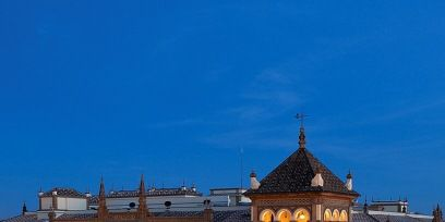 Window, Tree, Building, Arecales, Evening, Palm tree, Palace, Dusk, Finial, Mansion,