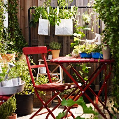 Flowerpot, Plant, Outdoor table, Garden, Outdoor furniture, Interior design, Houseplant, Backyard, Herb, Yard,