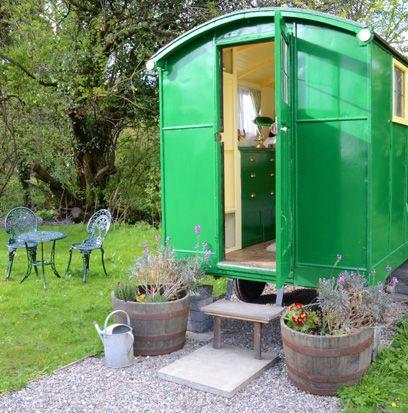 Flowerpot, Plant, Green, Teal, Garden, Houseplant, Door, Outdoor furniture, Turquoise, Herb,