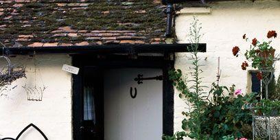 Flowerpot, Plant, Door, House, Fixture, Houseplant, Home door, Village, Cottage, Floral design,