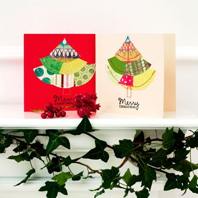 Leaf, Botany, Evergreen, Christmas, Twig, Christmas decoration, Annual plant, Conifer, Plant stem, Christmas eve,