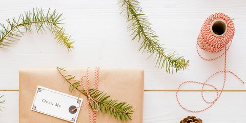 Branch, Gift wrapping, Twig, Tree, Fir, Vascular plant, Conifer, Pine, Plant, Pine family,