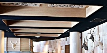 Wood, Interior design, Room, Living room, Furniture, Couch, Ceiling, Wall, Floor, Interior design,