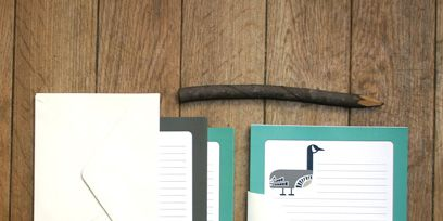 Wood, Text, Stationery, Hardwood, Wood stain, Teal, Parallel, Notebook, Bird, Turquoise,