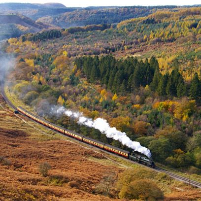 Nature, Mode of transport, Transport, Railway, Rolling stock, Leaf, Track, Highland, Train, Locomotive,