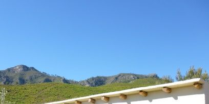 Property, Hill, Arecales, Arch, Palm tree, Arcade, Ridge, Hacienda, Summit,